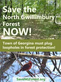Save the NG Forest - NOW!